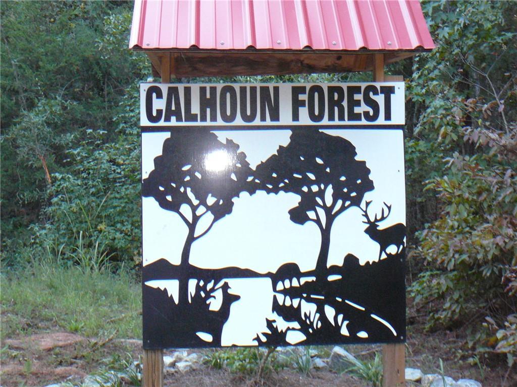 386 Calhoun Forest Drive Lowndesville, SC 29659