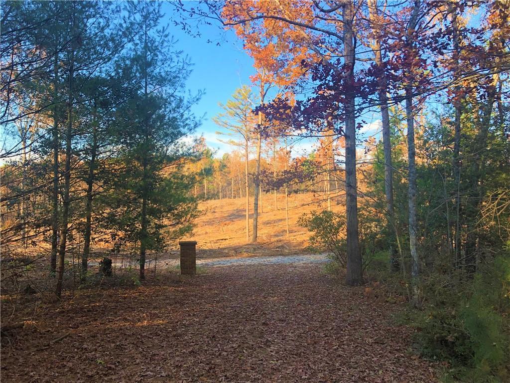 337 Friedberger Drive Mountain Rest, SC 29664