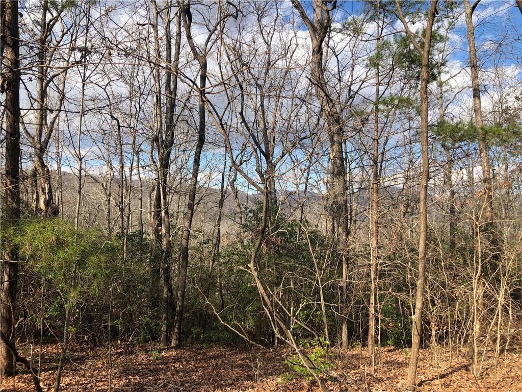 11 Lindsey Hill Trail Marietta, SC 29661