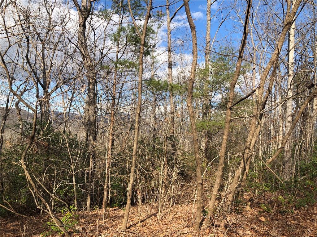 Lindsey Hill Trail Marietta, SC 29661