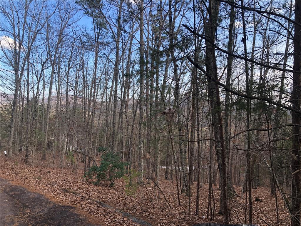 3 Lindsey Hill Trail Marietta, SC 29661