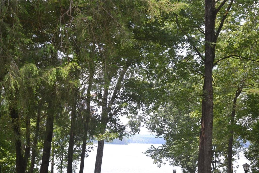 1 Reed Creek Point Hartwell, SC 30643