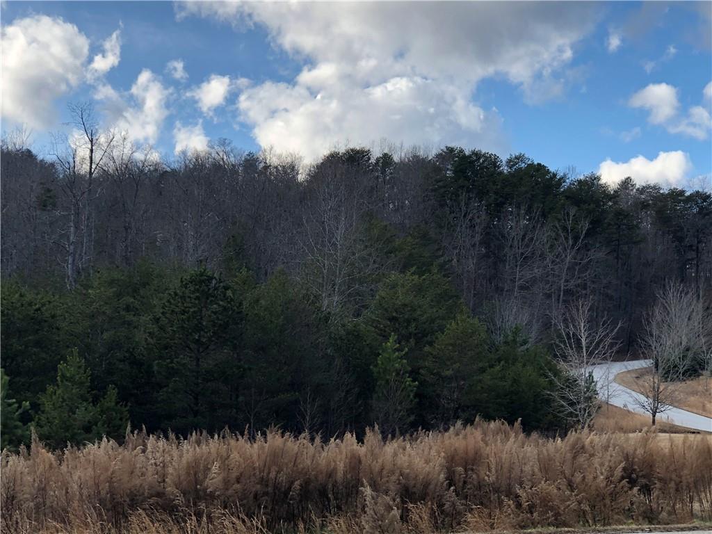5 Heritage Woods Trail Marietta, SC 29661