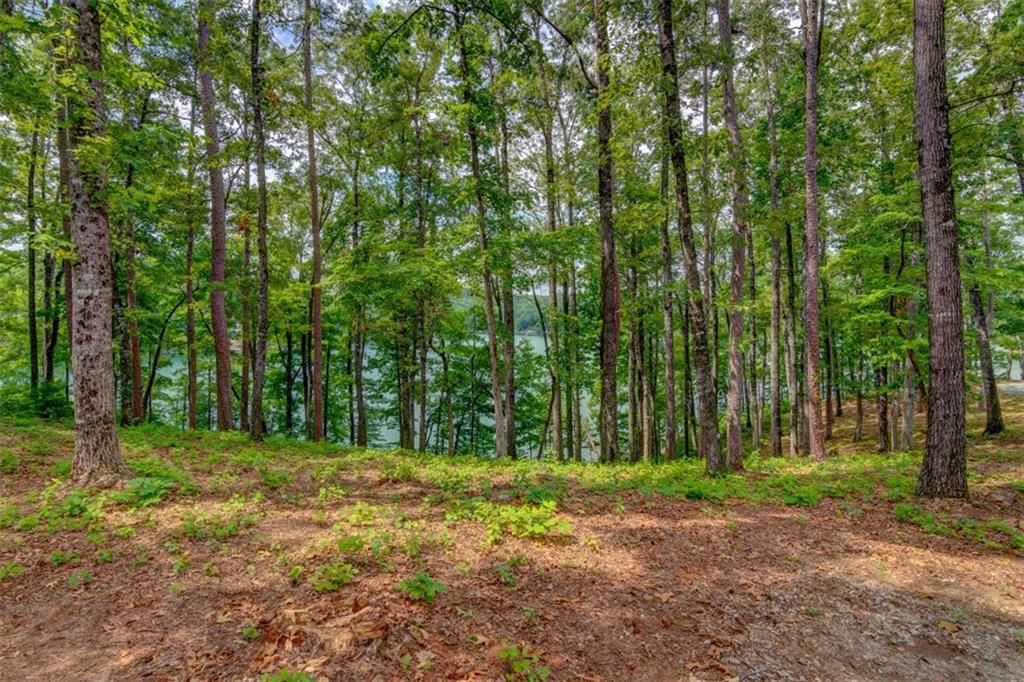 668 Crystal Cove Trail #kfs-tl-052 Salem, SC 29676