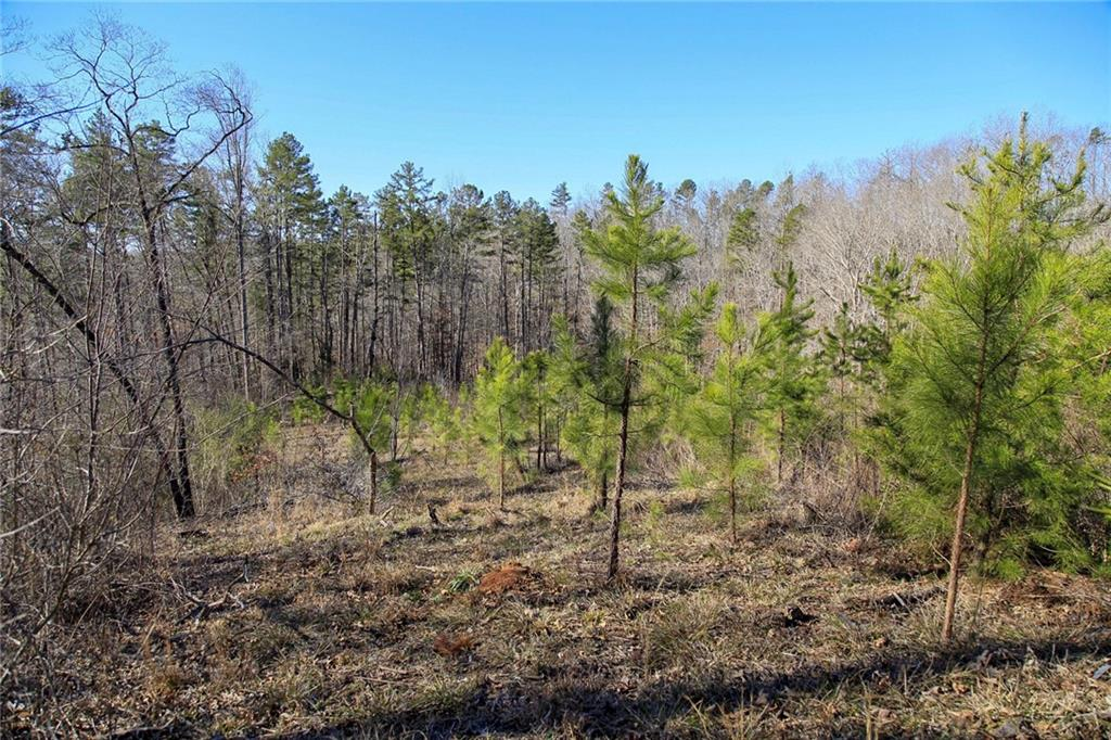 Hembree Hill Drive Westminster, SC 29693