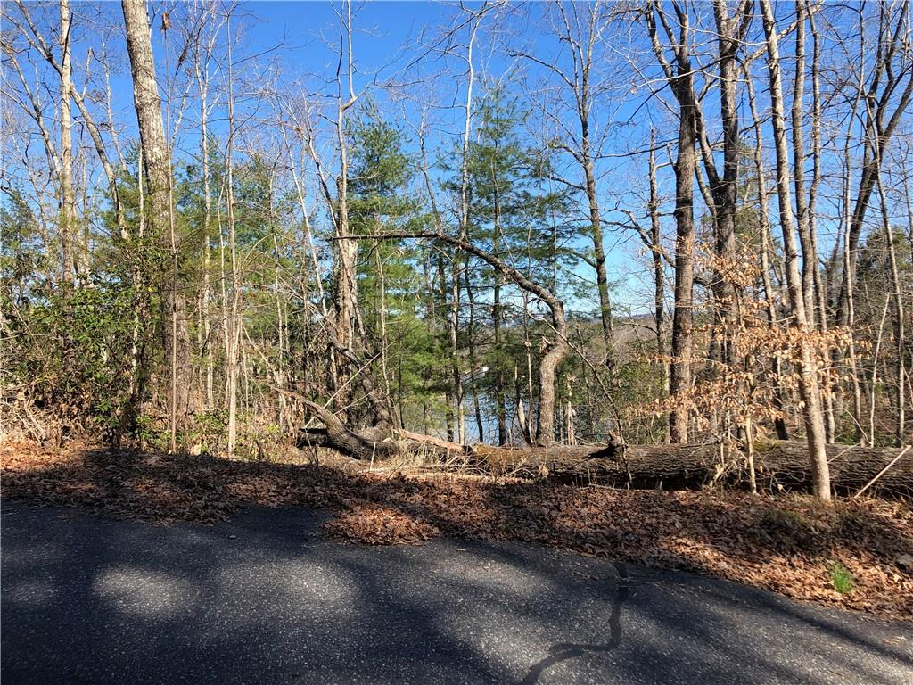 8 Lake Becky Road Mountain Rest, SC 29664