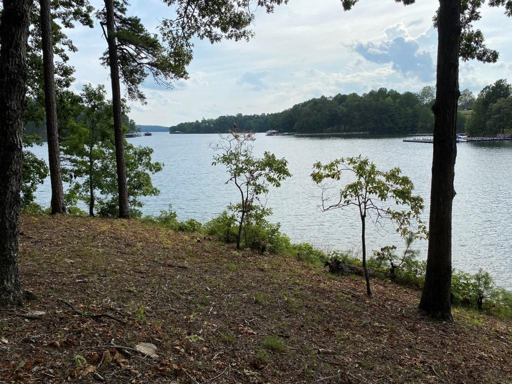 Sue Craig Road #Lot 4 Six Mile, SC 29682
