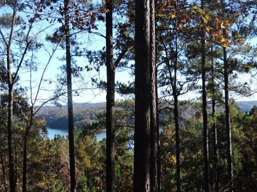 333 Long Cove Trail #KFS-LP-066 Salem, SC 29676