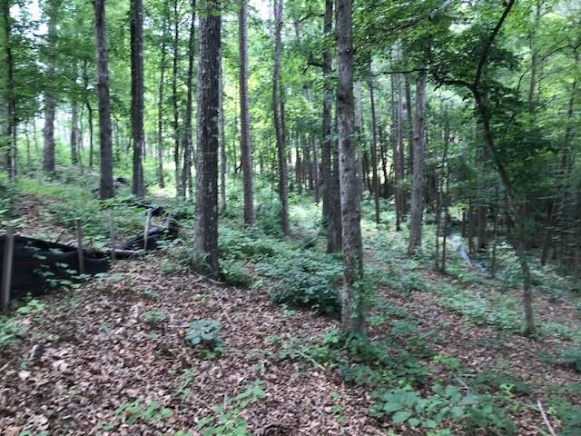 47 Clear Point Trail Seneca, SC 29672