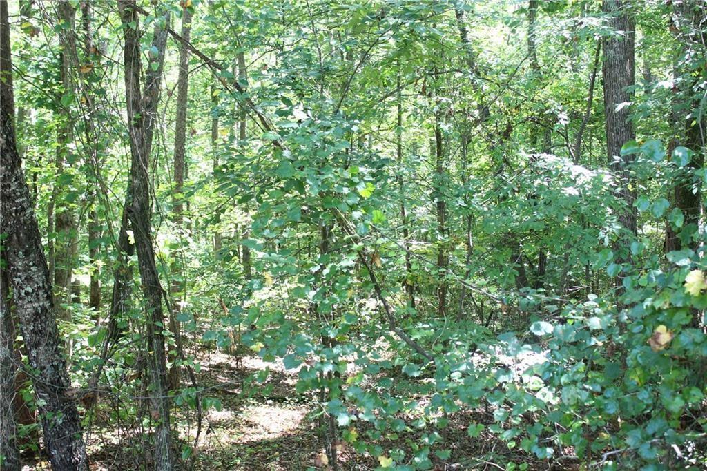 1426 Hunters Trail Anderson, SC 29625