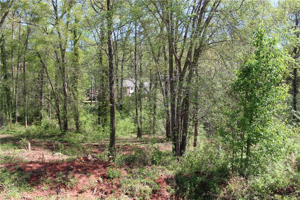 413 Beamer Drive Anderson, SC 29621