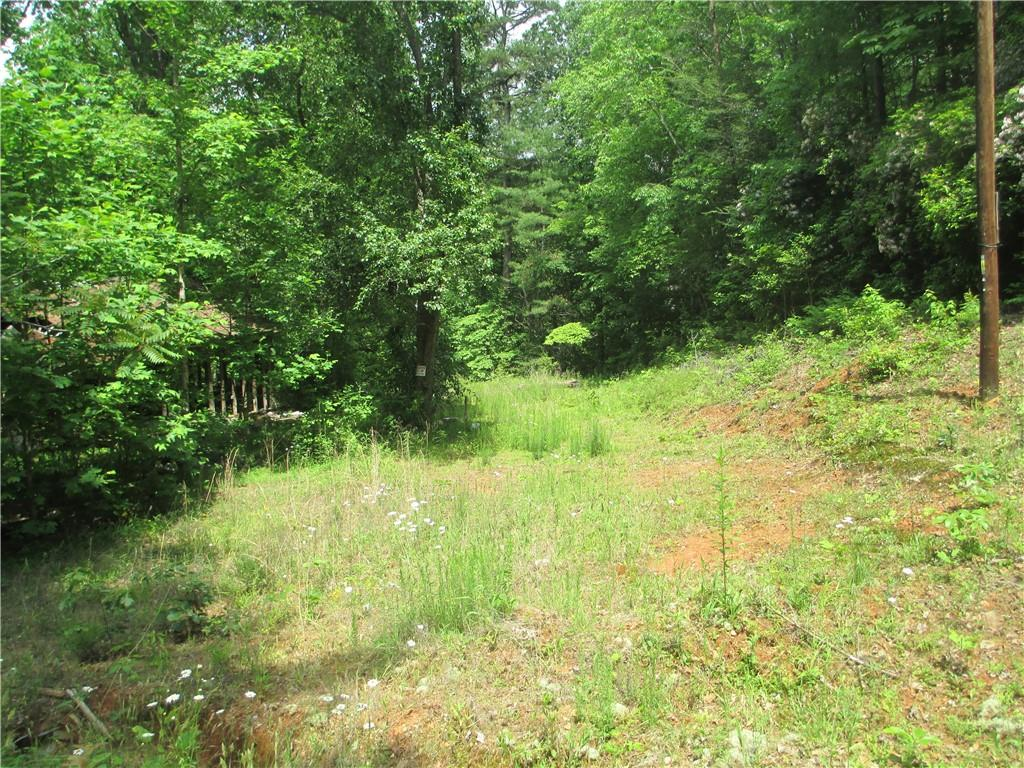 290 Santa's Lane Mountain Rest, SC 29664