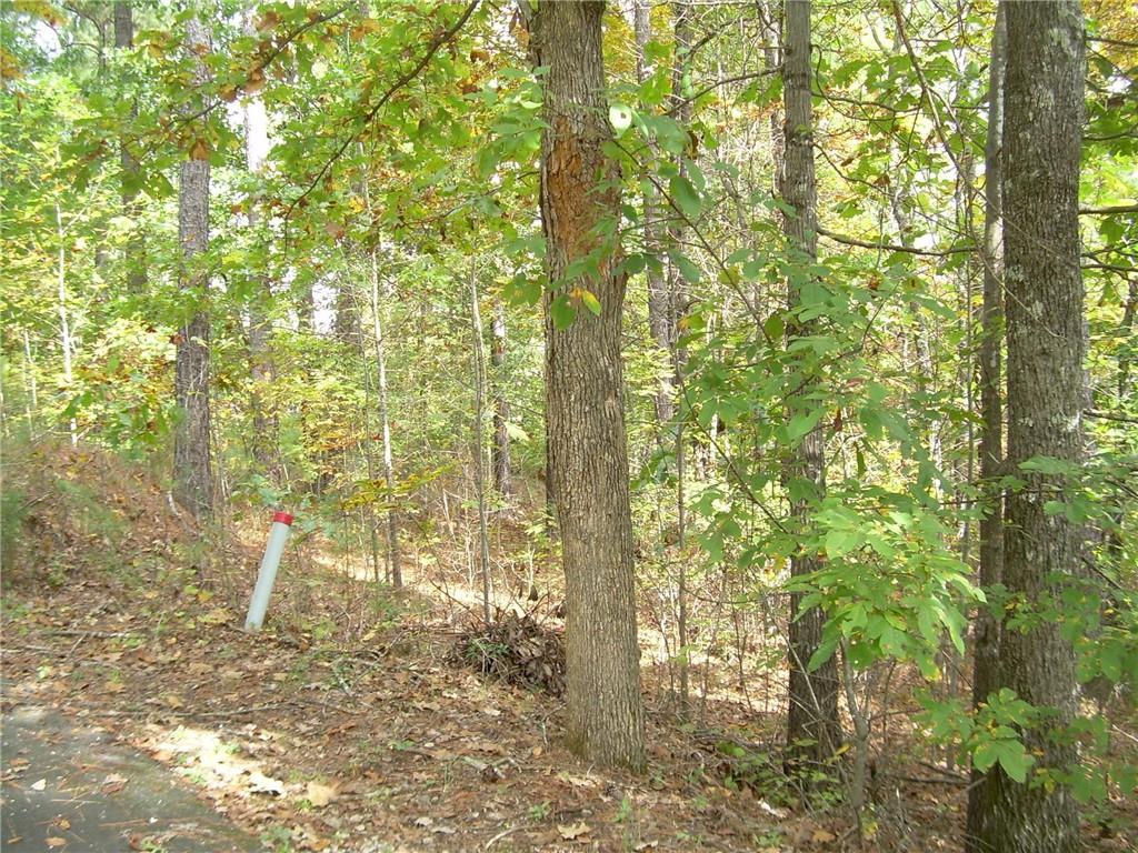 64 Long Cove/keowee Falls Trail Salem, SC 29676