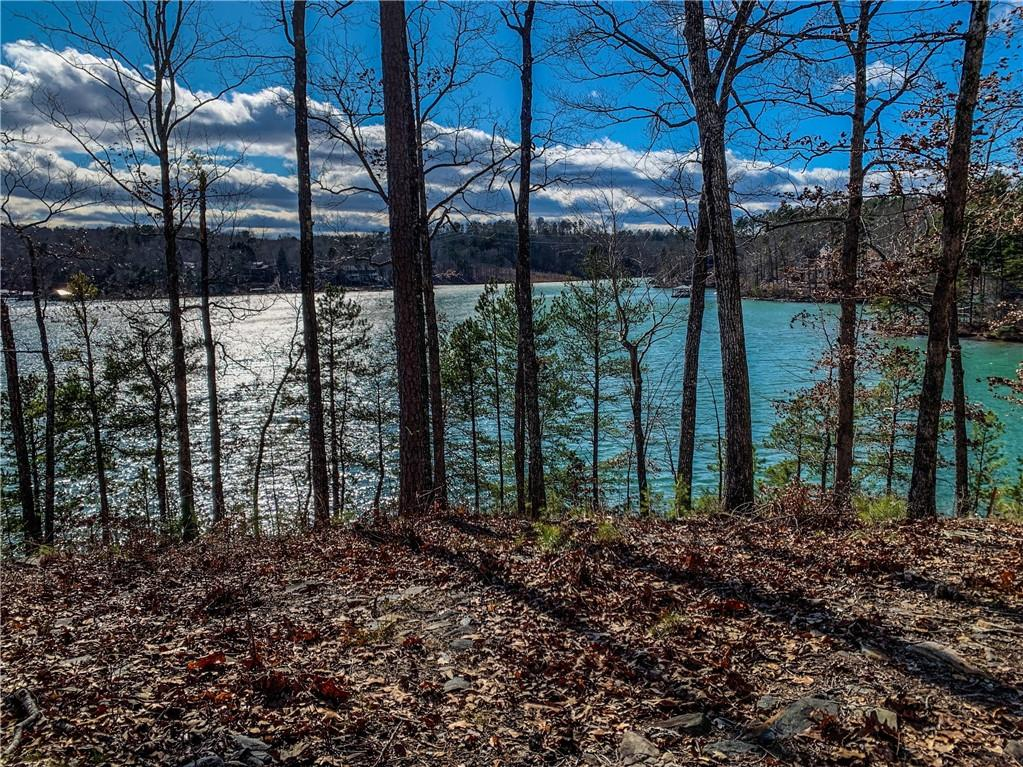 664 Crystal Cove Trail Salem, SC 29676