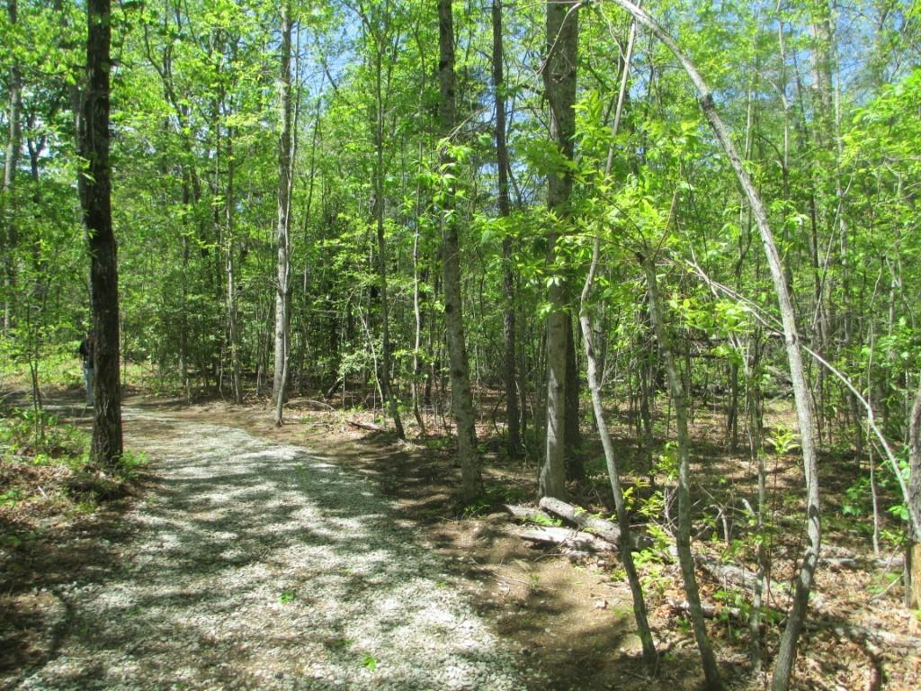 Lots 10 & 11 Lake Becky Interior No Lake Access Road Mountain Rest, SC 29664