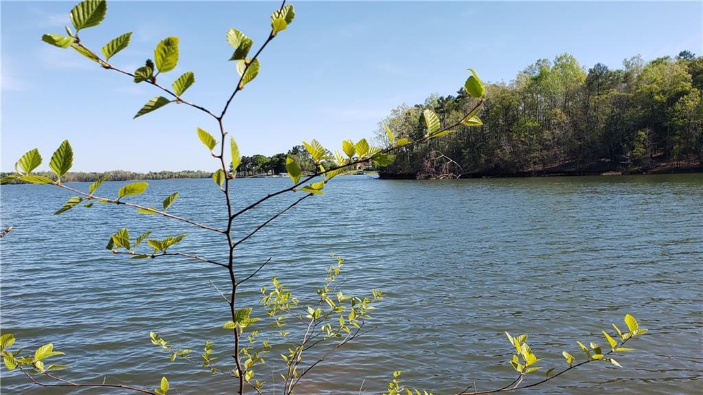 211 Lakegrove Lane UNIT 211 Lake Grove Ln Townville, SC 29689
