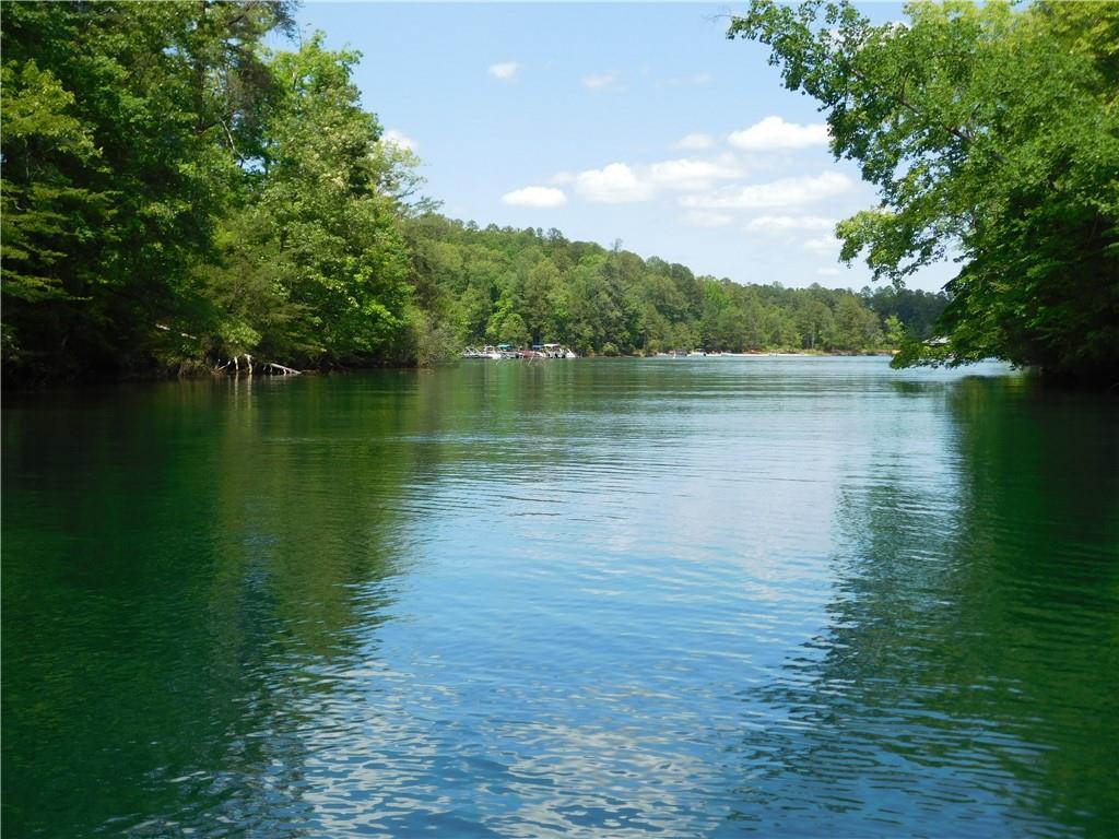 33 River Birch Way Salem, SC 29676