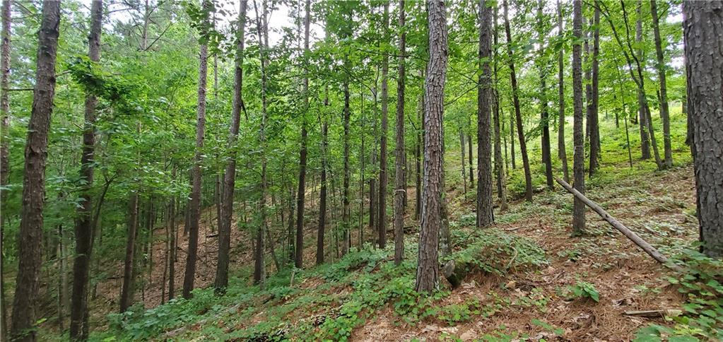 12 Eagle's Bend Trail Salem, SC 29676