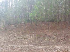 13 Meadow View Way Salem, SC 29676