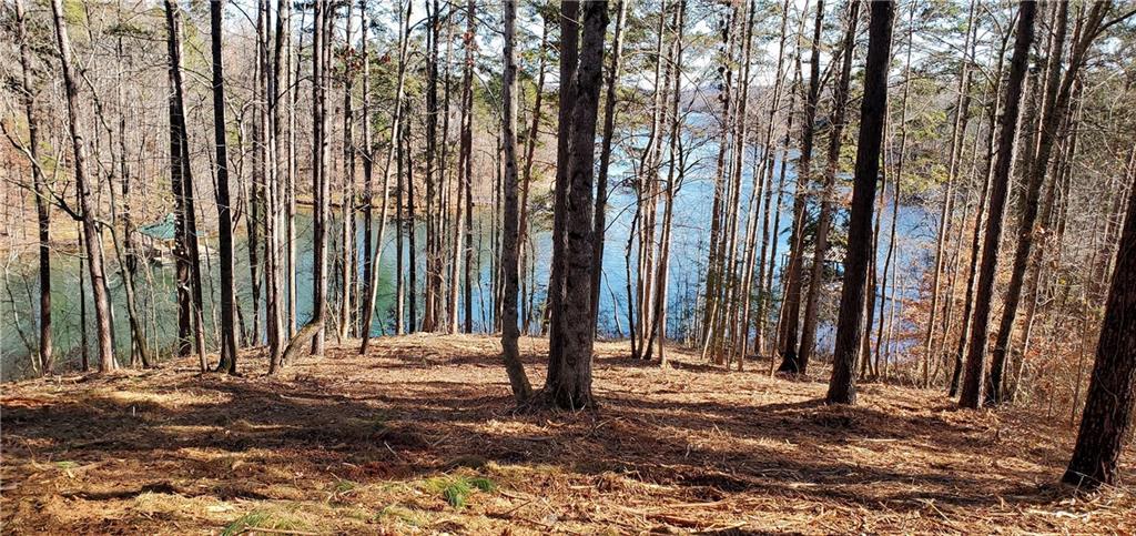 35 Crystal Cove Trail Salem, SC 29676