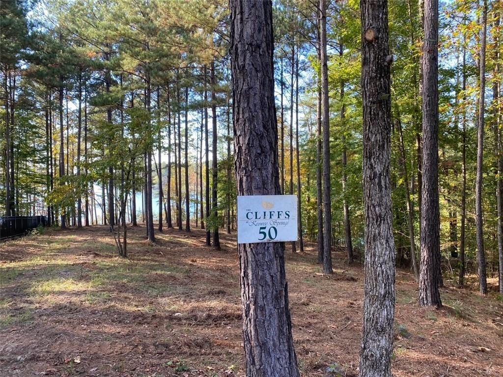724 Spring Cove Way Six Mile, SC 29682