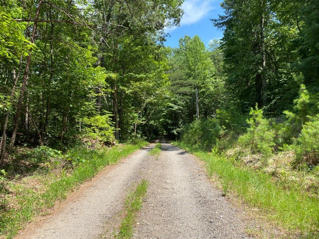 3 Chattooga Ridge /moriah Road Mountain Rest, SC 29664