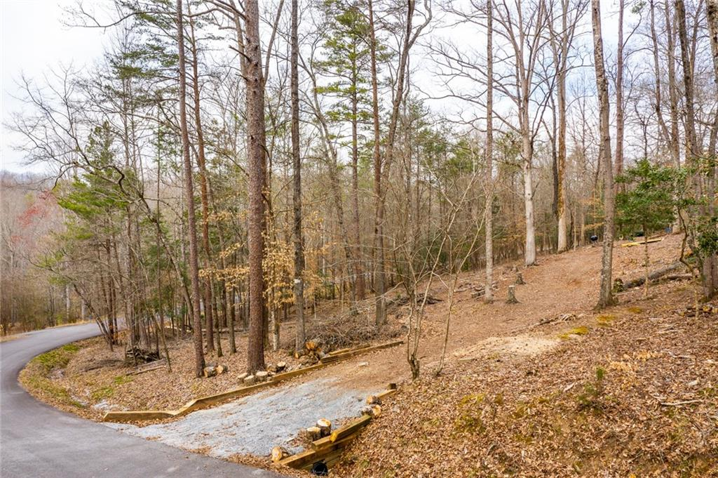 155 Carousel Drive Central, SC 29630