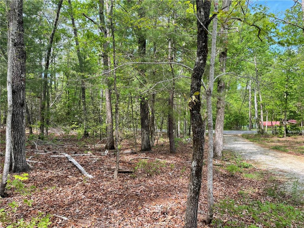 662 West Cove Road Mountain Rest, SC 29664