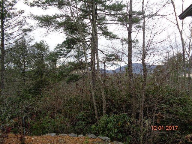 373  Sunrise Ridge Sapphire, SC 28774