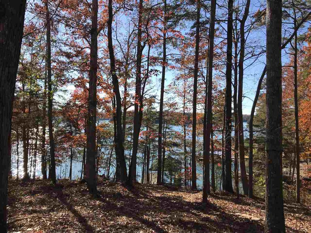 310 Bay Hill Drive #lot 53 The Woods At Lake West Union, SC 29696