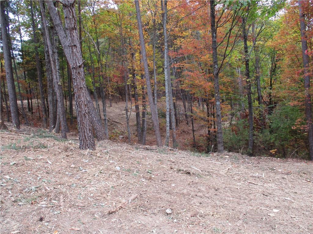 28 Tamassee Ridge Way Salem, SC 29676