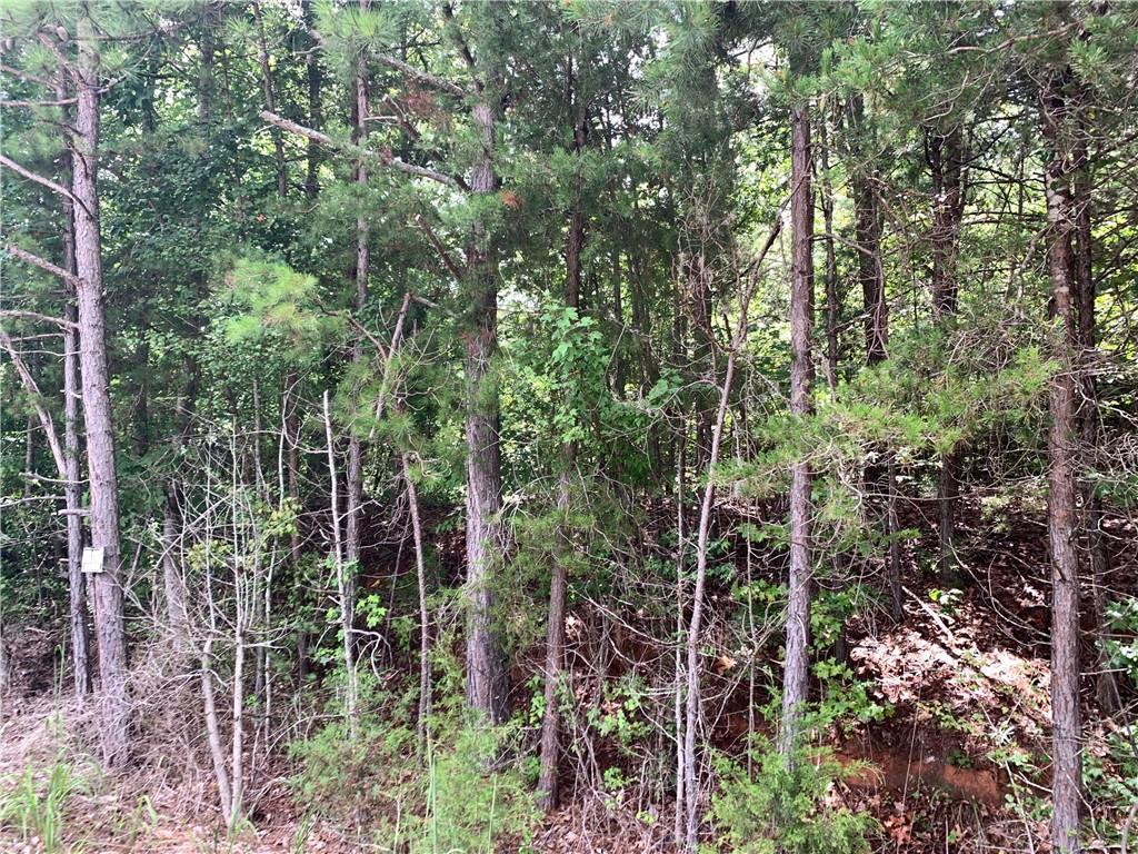 Martin Creek Road Seneca, SC 29678