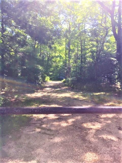 498 Whetstone Road Mountain Rest, SC 29664