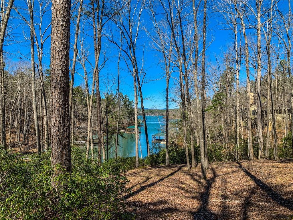 132 Big Creek Trail Six Mile, SC 29682