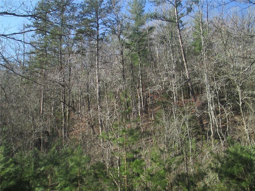 250 Peace Trail Mountain Rest, SC 29664