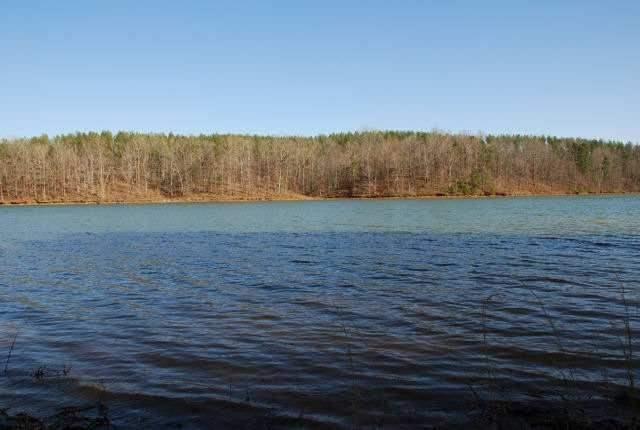 42 Four Pointes UNIT Natures View Drive Salem, SC 29676