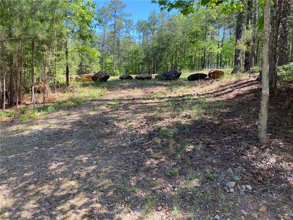 207 Golden Bear Drive Sunset, SC 29685