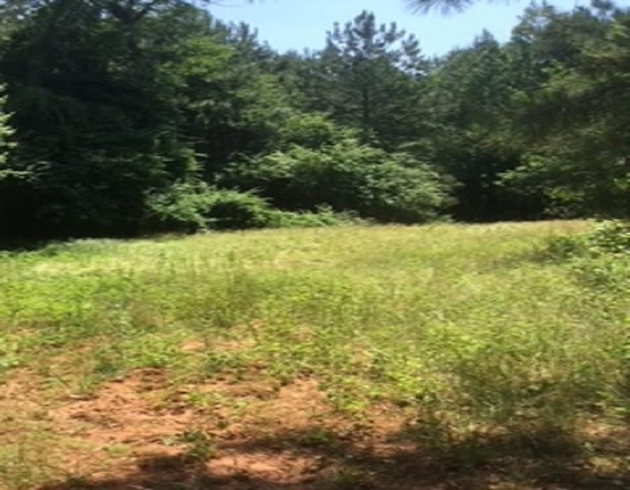 Griffin Mill Road Pickens, SC 29671